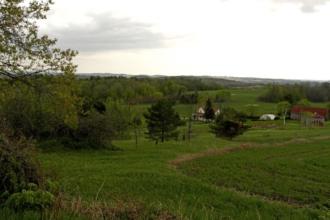 One of the views along the Cayuse Canter trails